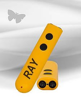 Obrazek Ray – pomoc w poruszaniu się