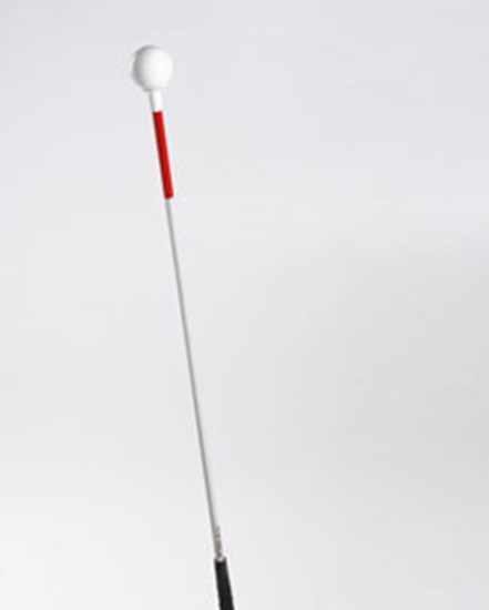 Picture of Inflexible graphite walking stick