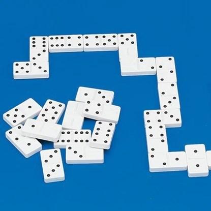 Domino RNIB