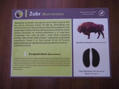 Picture of Transparentne tabliczki informacyjne z poddrukiem