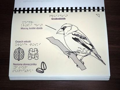 Picture of Grafiki na papierze pęczniejącym