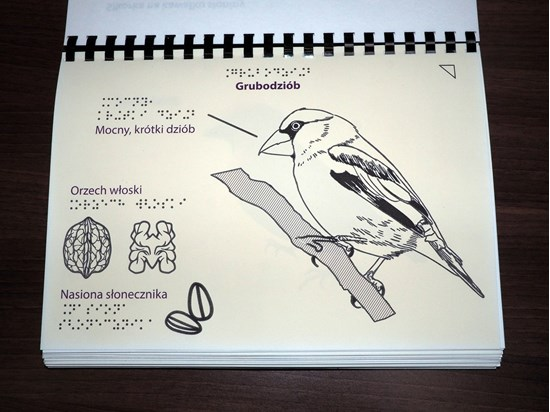 Снимка на Grafiki na papierze pęczniejącym